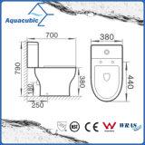 WC de lavagem duplo de descarga de duas peças (ACT5246)