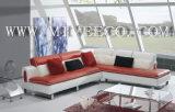Canapé en cuir (A-20#)