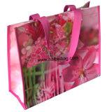 Pp Geweven het Winkelen Bag/Shopping Bag/Woven pp Zak