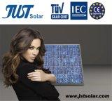 260 W de alta qualidade de Painéis Solares com 25 anos de garantia