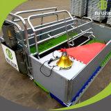 Embalaje de parto galvanizado del cerdo de la INMERSIÓN caliente para la pluma de parto de la alta calidad de la venta