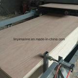 cara de 9m m BB/CC Bintangor y madera contrachapada posterior del embalaje de la madera contrachapada