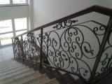 China Escadaria Fornecedor Grill Design/Piscina grades de ferro forjado