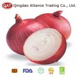 Лук нового урожая китайский свежий красный с верхним качеством