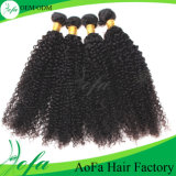 7A 급료 비꼬인 Crly 인도 인간적인 Virgin 머리 가발