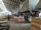 Chapa de madera el secado de la máquina Capacidad 30 cbm/Día