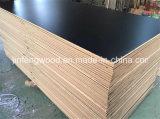ISO9001 급료 E1 멜라민 MDF/보통 MDF (1220*2440mm)