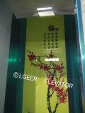 Lgeerのエレベーターの乗客の上昇/エレベーターLG-K32