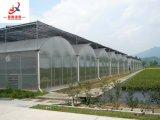 Túnel Multi-Span experimentado y Elegante Casa Verde para la galvanoplastia