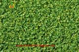 عال - كثافة اصطناعيّة عشب لعبة غولف يضع اللون الأخضر على عمليّة بيع