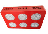 Agriculture Super Bright Full Spectrum LED Grow Lights 324W