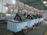 6 à 14 Xsflg casseroles Gelato Popsicle chariot d'affichage de la crème glacée à la vente (this approuvé)