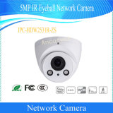 Dahua 5MP IR Eyeball Network Security CCTV Video Camera (IPC-HDW 2531R-ZS)