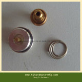 Parti su ordinazione di standard dell'anello del metallo