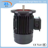 Ye2-100L2-4 Ye2シリーズ高性能の三相非同期モーター