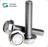 En acier inoxydable de haute qualité boulon à tête hexagonale et écrou de boulon à tête hexagonale