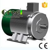 6kw un CA di 3 fasi a bassa velocità/generatore a magnete permanente sincrono di RPM, vento/acqua/idro potere