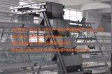De grote Kwaliteit & stelt de prijs vast van een Kippenren van de Kip van het Systeem & van de Laag van de Kooi van de Kip van de Kip van het Type