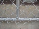 La rete fissa galvanizzata di collegamento Chain, PVC ha ricoperto la rete fissa di collegamento Chain