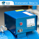 St 10kw Single Phase St Generating中国福建省Alternator Power