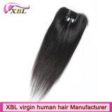 Knots Bleached Brazilian Human Hair Virgin Lace Closure