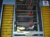 중국 저가 고명한 상표에 의하여 직류 전기를 통하는 조립식에게 층 닭장 올리기 (XGZ-GR001)