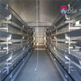 Las aves de corral automáticas del equipo de las aves de corral/del equipo de la casa de pollo contienen el sistema de cultivo completo