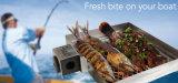 Le Special de gril de BBQ a conçu pour le bateau et le yacht de pêche avec l'abri et le couvercle de vent