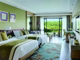 Современный отель гостевые комнаты оборудованы мебелью для 5-звездочный