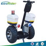 Ecorider Twee Autoped van het Saldo van de Autoped van het Wiel de Elektrische