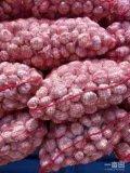 Пурпуровый чеснок от Jinxiang, Китай