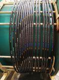 Tubo flessibile di gomma 20bar acqua/dell'aria