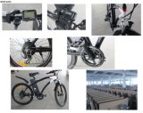 26inch China Bike Factory Wholesale Mountain Bike