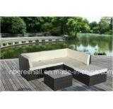 Rotin extérieur de type de Kd/meubles en osier de jardin de sofa