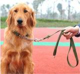 Collier de collier de chien en peau peignée ajustable en gros