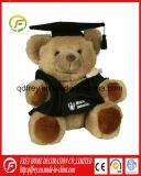 Parabéns Ursinho de Pelúcia para a Graduação