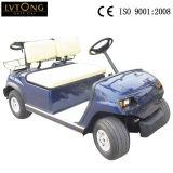 販売のための電池2のSeatersのゴルフカート