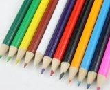 De 7 pulgadas de tamaño completo Lápiz de Color (SKY-031)