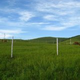 使用された農場によって電流を通される動物の塀か鉄の塀(Factory&Exporter)