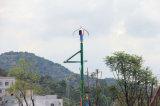 1kw turbina di vento verticale (Mini Turbine vento 100W-10kw)