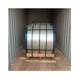 Hot Dipped S350gd Z100 Galvanized Steel Coil