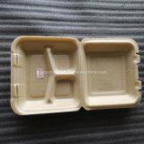 Environnement La protection de la compagnie aérienne d'aliments sains Emballage biodégradable
