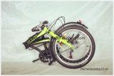 남아메리카 최신 판매 접히는 자전거, 강철 접히는 자전거,