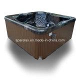 De Sanitary Massage SPA Apparatuur van Balboa Control (A410)