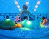 La ville d'amusement de royaume de baleine pour des affaires et l'amusement de Cummerical