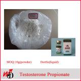 CAS 315-37-7 화학 스테로이드 호르몬 분말 테스토스테론 Enanthate