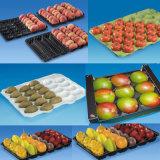 Embalagem em blister descartáveis de plástico PET divisores da bandeja interna de frutas