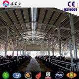 Étable/Structure en acier ferme laitière