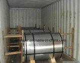 Feuilles en acier / bobine en acier galvanisé