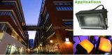 Großhandelsbewegungs-Fühler-Wand-Licht/Außenwand der Lampen-100W 50W leuchten unten